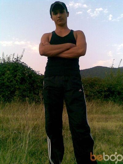 ���� ������� taiman, ���������, �������, 26