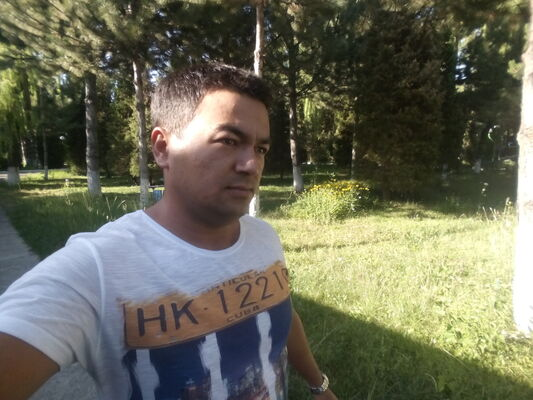 ���� ������� Sanjar, �������, ����������, 29