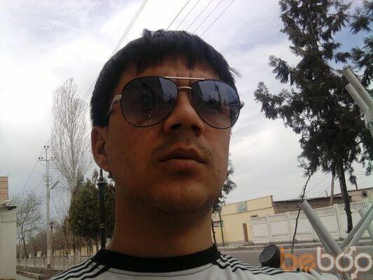 ���� ������� tatarin, �������, ������������, 33