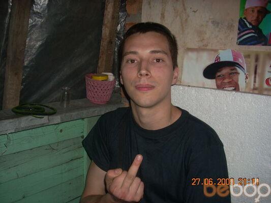 ���� ������� pingo, ������������, �������, 31