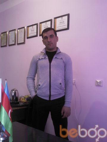 ���� ������� xrabri serca, ����, �����������, 31