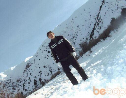 ���� ������� Bakh, �������, ����������, 33