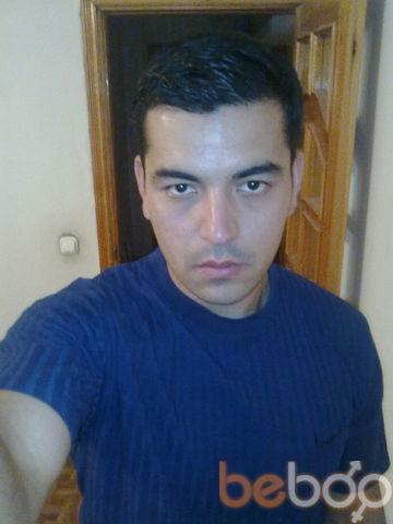 ���� ������� reno, �������, ����������, 36