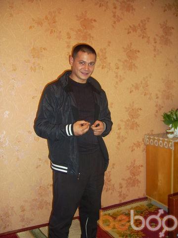 ���� ������� ochik, ����, �������, 31