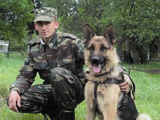 Фото мужчины алекс, Мурманск, Россия, 34