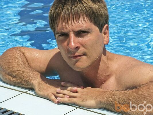 ���� ������� Dimopus, ���������, ������, 36